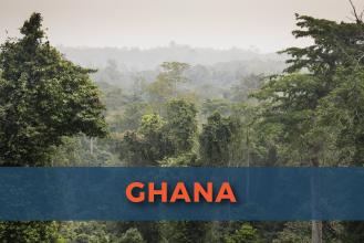 Ghana visas